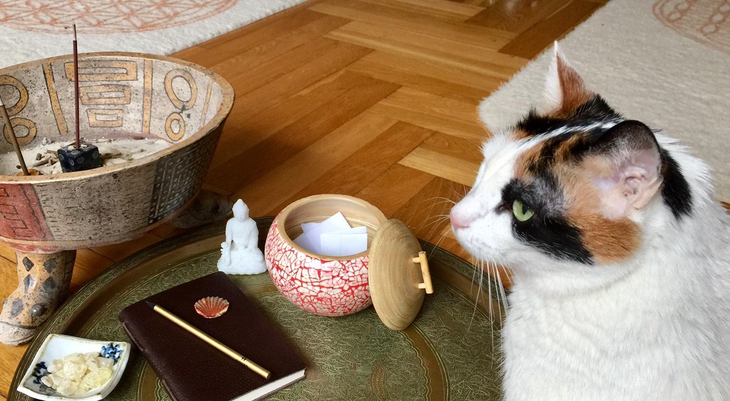 Der Gandiva Yoga Adventskalender Am 18 Dezember Was Wünsche Ich